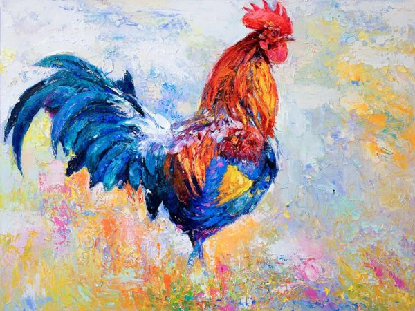 American Rooster